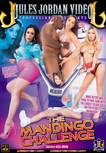 The Mandingo Challenge Boxcover