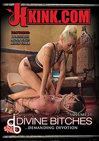 Divine Bitches 11 Boxcover