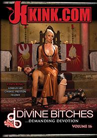 Divine Bitches 16 Boxcover