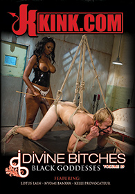Divine Bitches 19 Boxcover