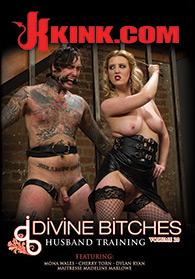 Divine Bitches 20 Boxcover