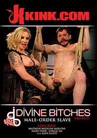 Divine Bitches 21 Boxcover