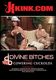 Divine Bitches 22 Boxcover