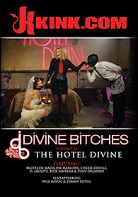 Divine Bitches 23 The Hotel Divine Boxcover