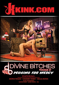 Divine Bitches 27 Pegging for Mercy Boxcover