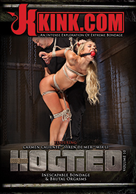 Hogtied 10 Boxcover