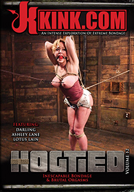 Hogtied 12 Boxcover