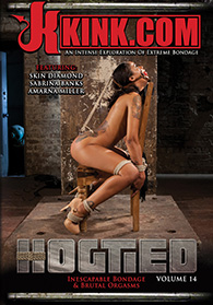 Hogtied 14 Boxcover