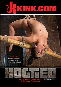 Hogtied 22 Boxcover