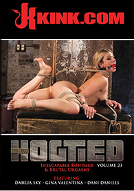 Hogtied 23 Boxcover