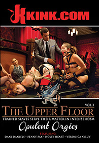 The Upper Floor Vol 3 Opulent Orgies Boxcover